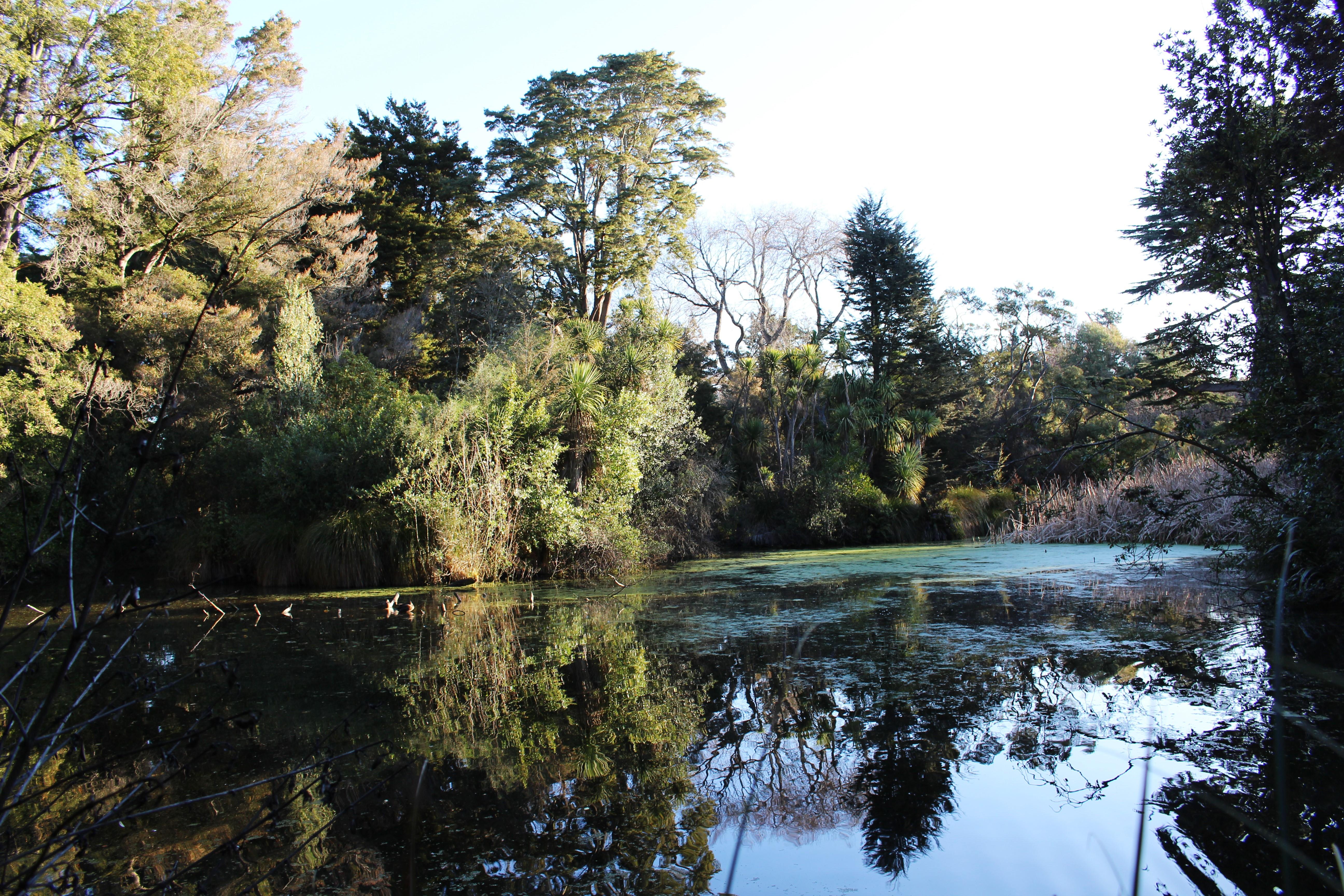 Le jardin botanique on s 39 escape for Jardin botanique hiver 2015